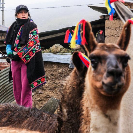 Route inca de Pariacaca : village de Tanta