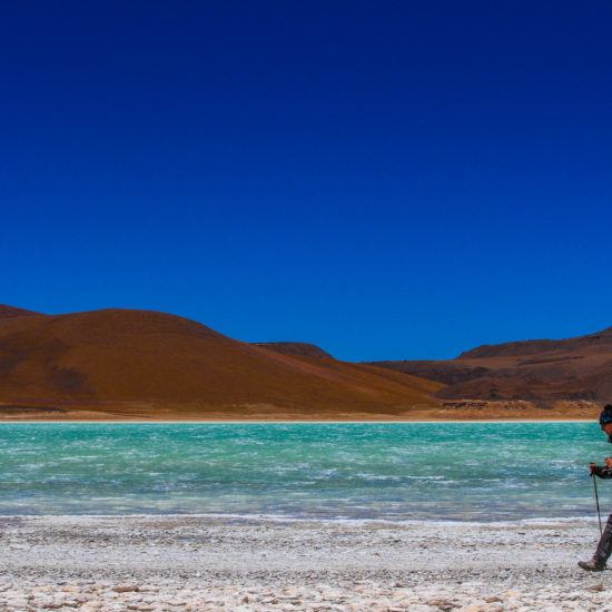 Expédition Lipez : Laguna Verde